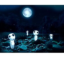 Moonlight Kodama Photographic Print