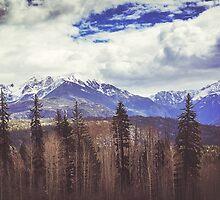 Colorado Mountains by Jonicool
