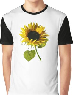 Sunflower Shadow and Light Graphic T-Shirt