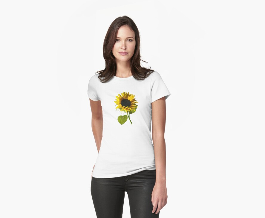 Sunflower Shadow and Light by Susan Savad