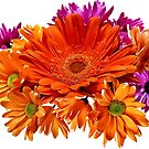 Mixed Bouquet of Gerbera Daisies and Mums by Susan Savad