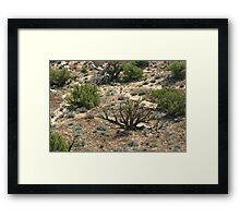 Canyonlands 52 Framed Print
