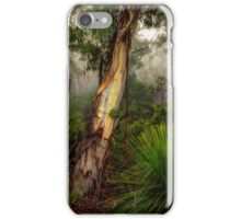 For The Love Of Trees - The HDR Experience iPhone Case/Skin