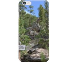 Lumpy Ridge's RMNP iPhone Case/Skin