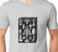 Mushrooms in a box Unisex T-Shirt