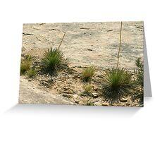 Canyonlands 58 Greeting Card
