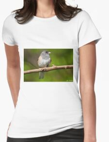 Dark Eyed Junco Perched on a Branch Womens Fitted T-Shirt