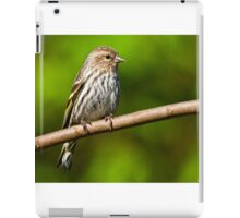 Pine Siskin Perched on a Branch iPad Case/Skin
