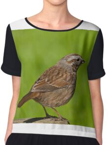 Song Sparrow on a Log Chiffon Top