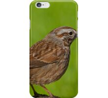Song Sparrow on a Log iPhone Case/Skin