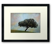 The candle tree Framed Print