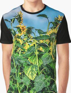 Sunflower Field Graphic T-Shirt