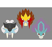 The Three Legendary Beasts Photographic Print