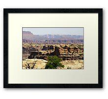 Canyonlands 79 Framed Print