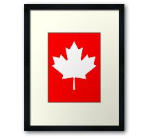 White maple leaf Framed Print