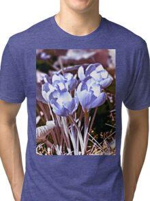 Crocus Infrared Tri-blend T-Shirt