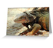 Handsome Iguana Greeting Card