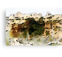 Cave of Grass Canvas Print