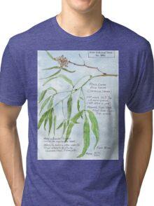 Black Karee leaves - Rhus lancea - Botanical Tri-blend T-Shirt