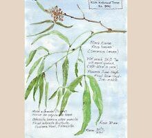 Black Karee leaves - Rhus lancea - Botanical Womens Fitted T-Shirt
