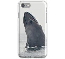 Hoppin' Humpback Whale iPhone Case/Skin