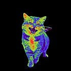 Psychedelic Cat by pocketsoup