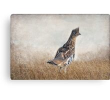 Grouse - Red Morph Canvas Print
