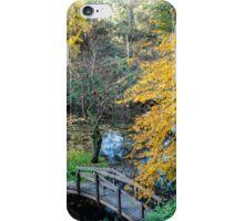 Alfred Nichols Gardens in the Dandenongs iPhone Case/Skin