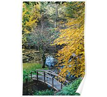 Alfred Nichols Gardens in the Dandenongs Poster