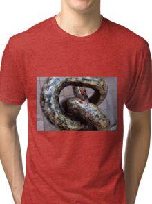 sculpture Tri-blend T-Shirt