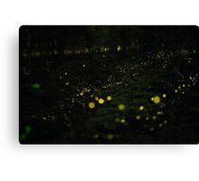 Dream of Fireflies Canvas Print