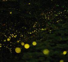 Dream of Fireflies Sticker