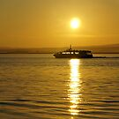Cruise at sunrise on ther Moray Firth by Steve
