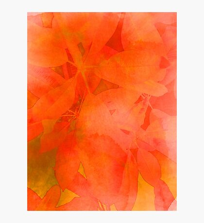 Fiery Orange Leaf Print - Abstract Watercolor Blend Photographic Print