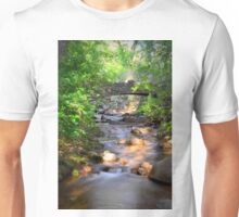 Water Under The Bridge Unisex T-Shirt