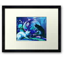 Kittens with Goldfishes Framed Print