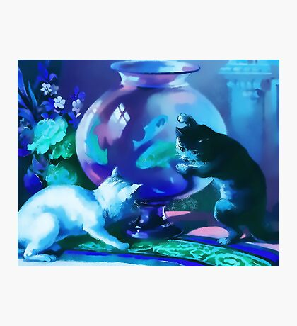 Kittens with Goldfishes Photographic Print
