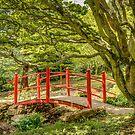 Japanese Bridge by vivsworld