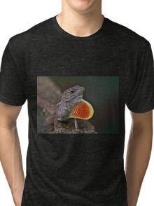 Good Luck Gecko Tri-blend T-Shirt