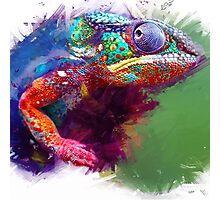 Chameleon Photographic Print