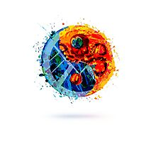 Painted Hydra and SHIELD, Yin and Yang Shape Photographic Print