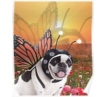 Butterfly Dog, Doggo #2 Poster