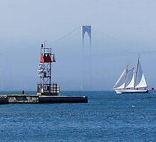 Sails in Newport, RI by Nancy Richard