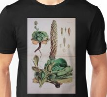The botany of the Antarctic voyage of H M  discovery ships Erebus and Terror in the Years 1839 1843 Joseph Dalton Hooker V1 181 Unisex T-Shirt