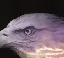 Double Exposure Eagle Sticker