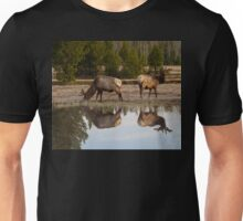 Spring Reflections #2 Unisex T-Shirt
