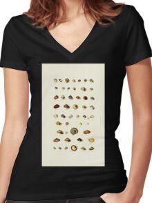 Thesaurus conchyliorum Monographs of genera of shells George Brettingham Sowerby 1887 V1-V5 002 Women's Fitted V-Neck T-Shirt