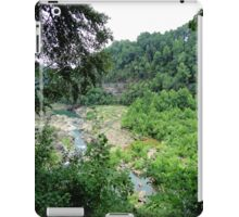 Limestone Valley iPad Case/Skin