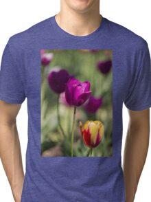 Study of Tulips Tri-blend T-Shirt