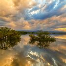 Stormy Sunset Reflections by Bo Insogna